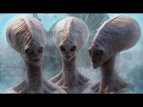 【閲覧注意】もう地球にいるエイリアン8種(UMA・宇宙人・UFO)