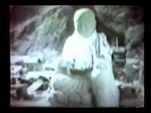 南海大地震の記録(高知県)
